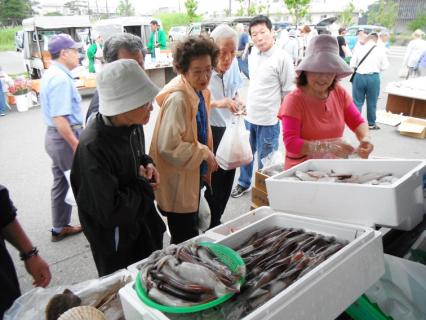 「鶴岡朝市」で鮮魚を買い求める人たち=22日